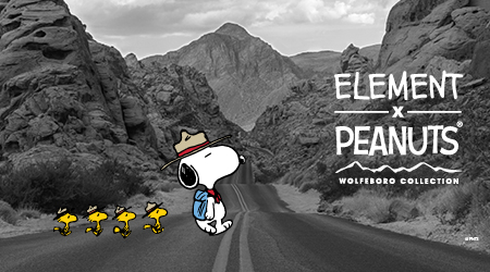 Navigation Peanuts x Element Collection
